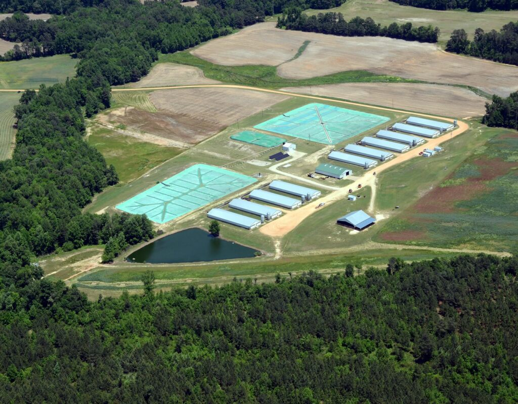 Butler Farms Bioenergy Project