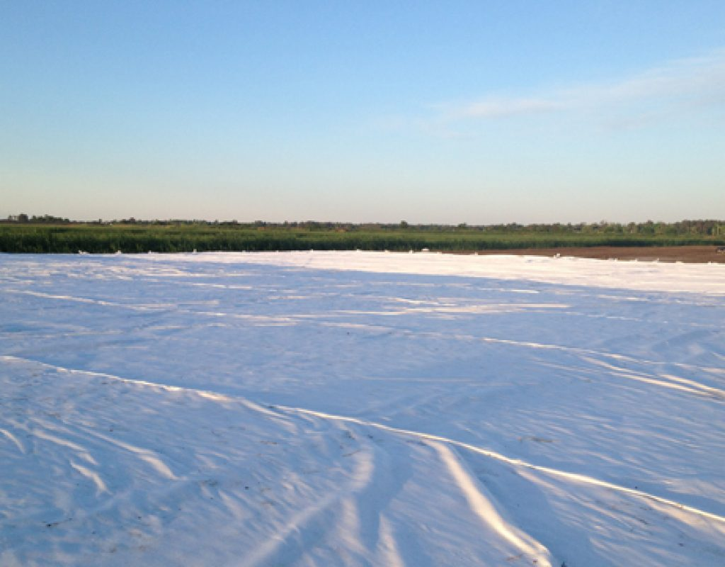 Your supplier when designing with geosynthetics